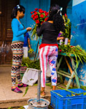 Cuban rose vendor